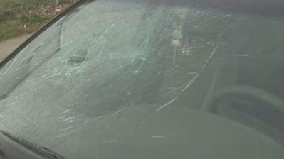 Police have arrested a group of kids for a rash of windshield vandalism.