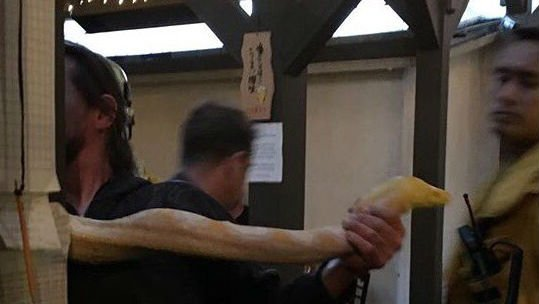 Los Angeles police say diners scattered when a man dropped a 13-foot python on the floor of a sushi restaurant. Photo: nv_beauty/Twitter