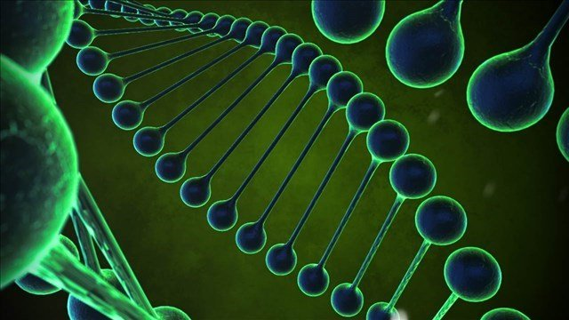 nvestigators are broadening their DNA searches beyond government databases and demanding genetic information from companies that do ancestry research for customers.