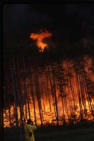 Forest fire in Siberia. Courtesy: Laboratory of Tree-Ring Research, The University of Arizona