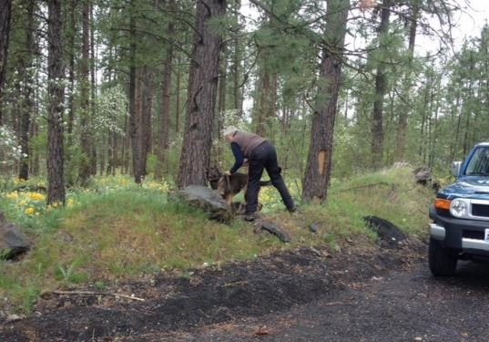 Spokane police investigate discovery of skull near Downriver Golf Course, 4/11/16