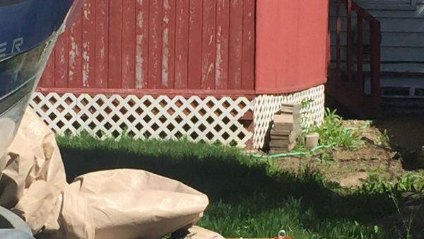 The suspect was hiding under a neighbor's porch
