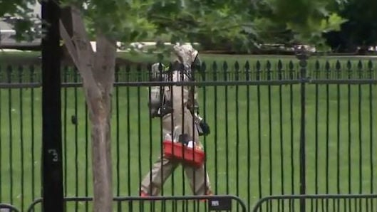 The Secret Service says the White House has returned to normal operations after being placed on lockdown early Monday afternoon. Photo: NBC