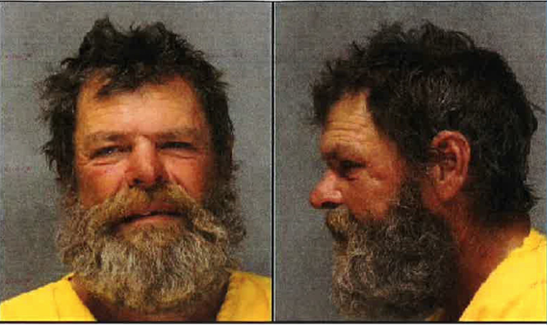 Police and fire investigators arrested 56-year-old Donald Hayward for several recent fires.