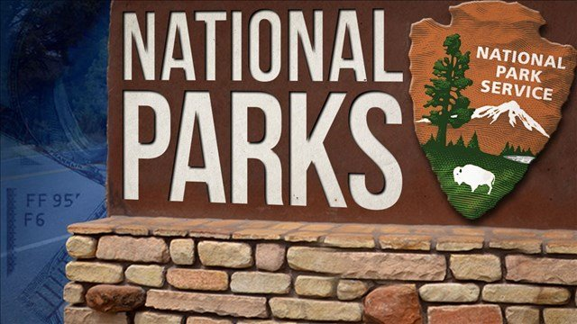 Record visitor numbers at the nation's first national park have transformed Yellowstone National Park's annual tourist rush into a sometimes dangerous frenzy.
