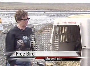 Marnee returned 'Moses' to Moses Lake for his release after a month of rehabilitation