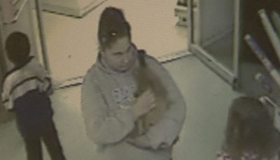 The thief was caught on camera carrying the $400 dog out the NW Seed and Pet