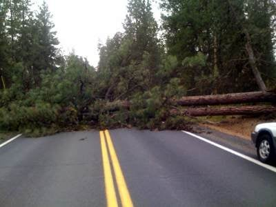 Hwy 195; Spangle/Cheney Rd.