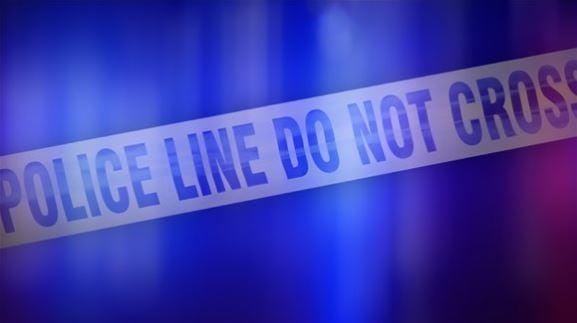 5-month-old Georgia girl mauled, killed by babysitter's dog