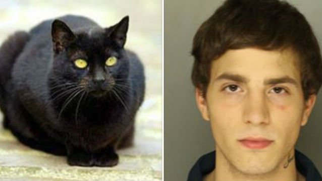 Officers had some help from a cat to catch Michael Steffy (The picture on the right, obviously). (PHOTO: FACEBOOK)