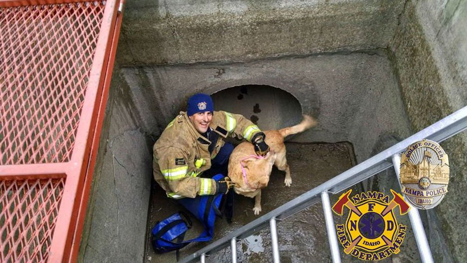 Photo: Nampa Idaho Fire Department/Facebook