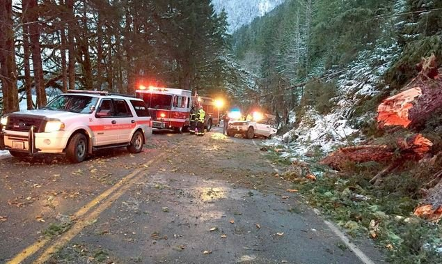Emergency responders work around an empty SUV that held five people when it was struck by a tree at Lake Crescent on Sunday.