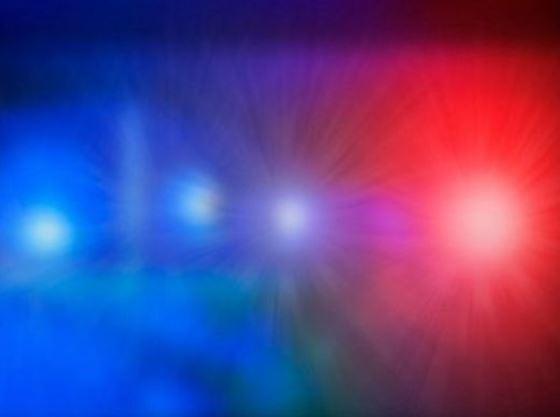 Idaho police looking for shooter targeting llamas, livestock
