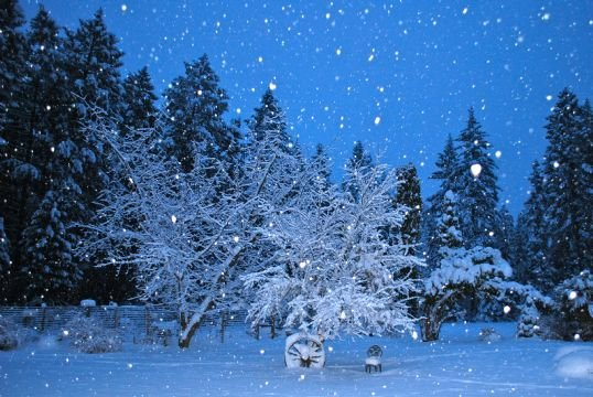 (Terri from Hayden uploaded this picture to our KHQ.com weather page)