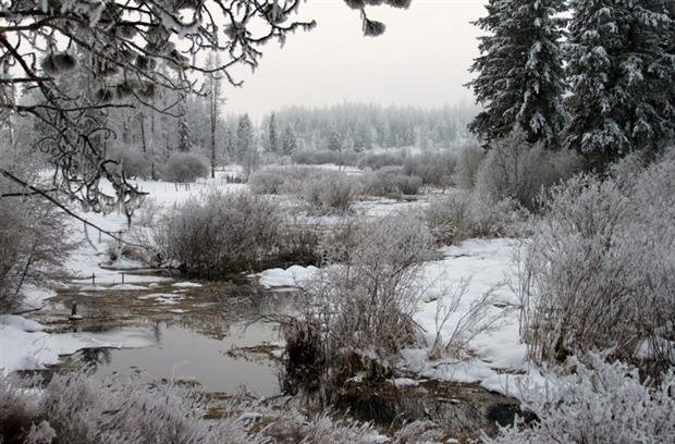 Photo From KHQ Viewer Dennis Held