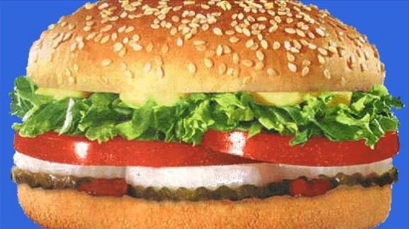 This wasn't the hamburger. This is a generic photo of a hamburger. Where is the meat? It looks like just pickles, onions,tomatoes,lettuce and sauce? Right?