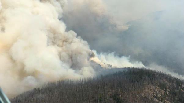 Diamond Creek Fire, inciweb