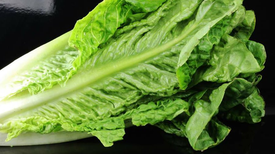 Consumer Reports urges Americans to avoid romaine lettuce because of E.coli concerns
