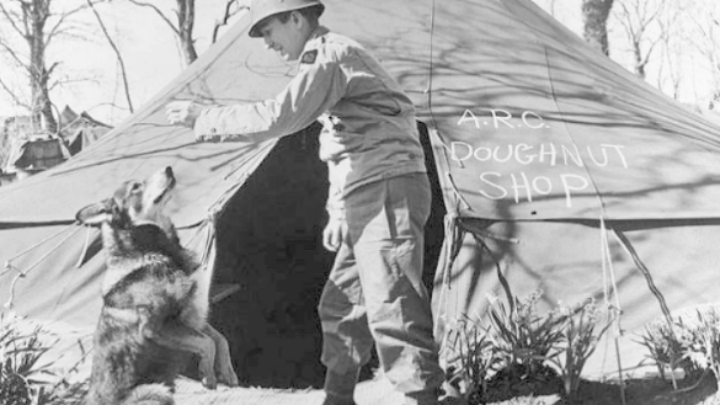 Chips, shown in this undated photo, served in the U.S. Army during World War II. The mutt took part in Allied campaigns in North Africa, Italy, France and elsewhere in Europe. (U.S. Army Quartermaster Museum)