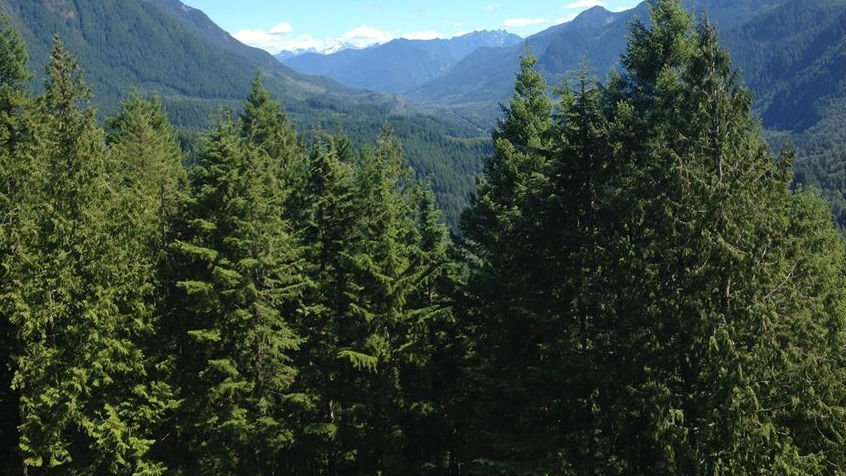 Snoqualmie National Forest