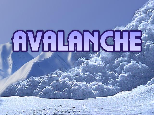 Colorado Avalanche Inf...