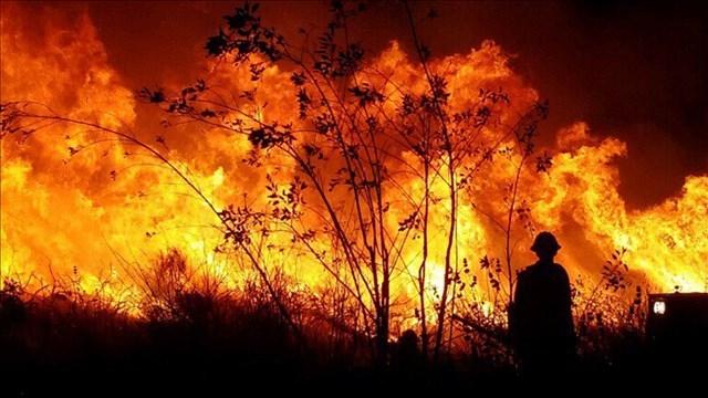 Thomas Fire. Courtesy: Ventura County Fire Dept. PIO