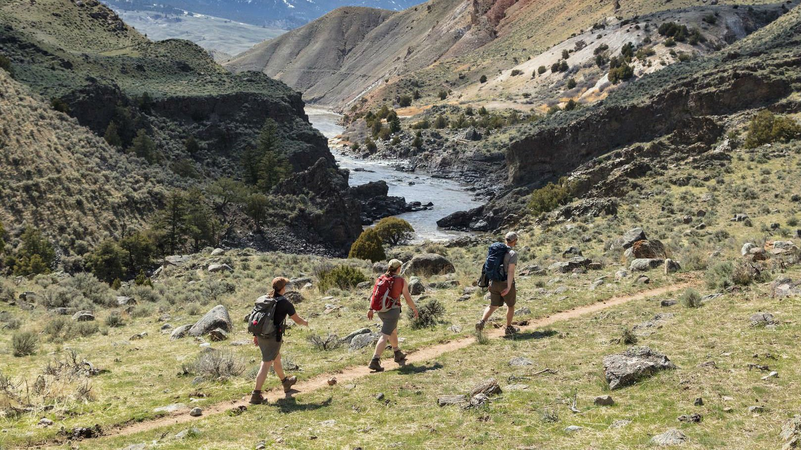 Dayhikers on Yellowstone River Trail through Black Canyon of the Yellowstone. Courtesy Yellowstone National Park Facebook page