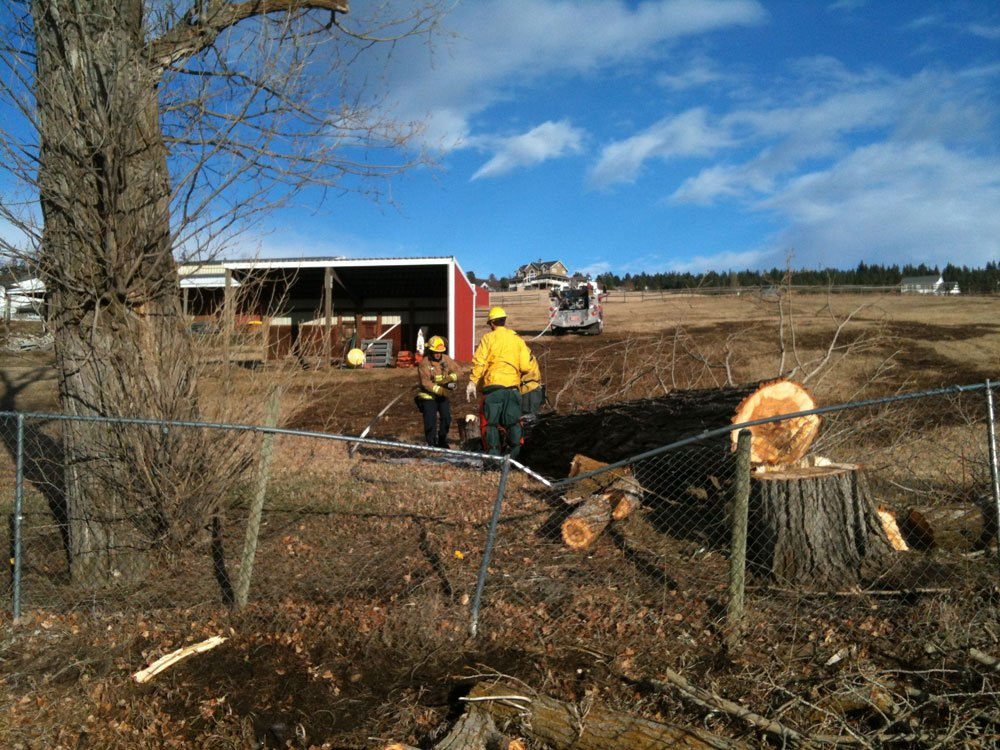 © Crews removed what was left of a tree on the 3900 block of S. Eastern Rd. (Photo: KHQ)