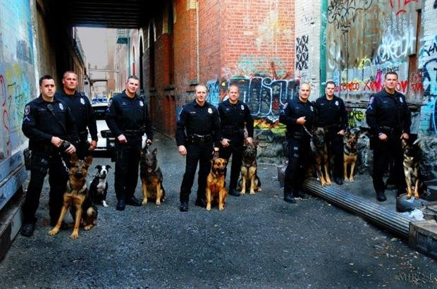 The Spokane Police Department And Their K-9 Unit Are Looking For Training Sites (Photo From spokanepolice.org)