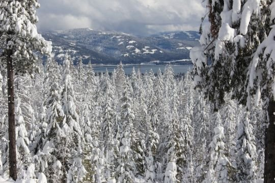 Photo uploaded to our KHQ.Com weather page