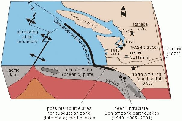 Diagram Of The Cascadia Subduction Zone (Photo From waDNR)