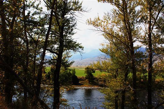 © Danny Magnus snapped this photo in Mullan, Idaho