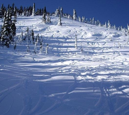 File photo of Schweitzer mountain