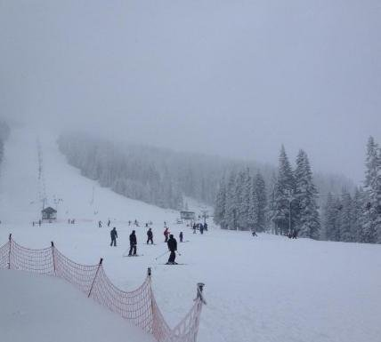 Photo taken on Mt. Spokane on Wed. afternoon