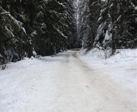 The Road To The Hayden Creek Shooting Pit