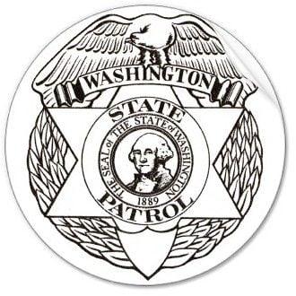 Logo From WSP