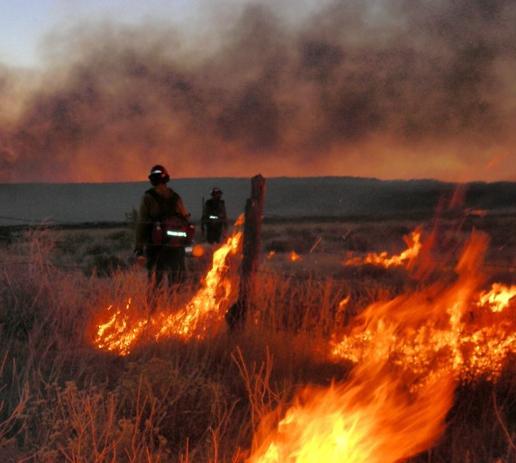 Arizona Wildfire, Firefighters, Photo Credit: US Forest Servie