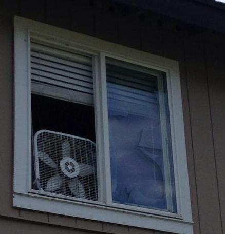 Photo of the apartment where the raid happened