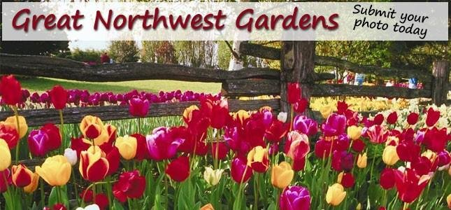 Great Northwest Gardens Photo Contest