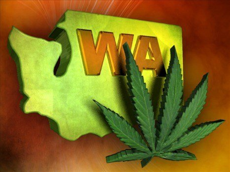 Washington's first pot auction brought in about $600,000.