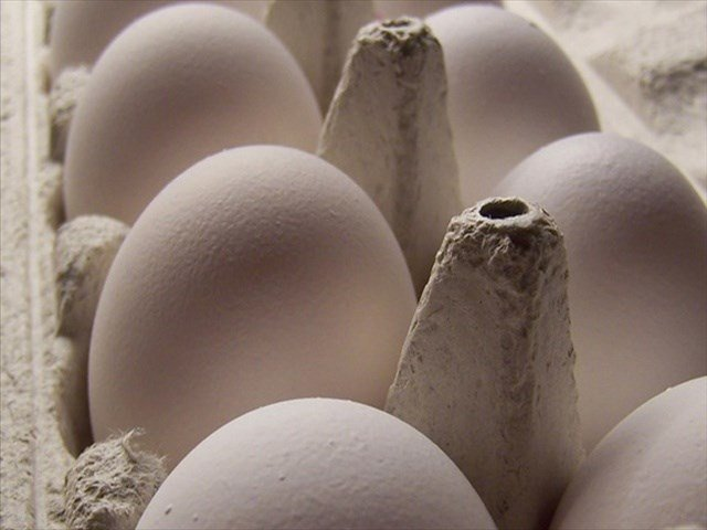Nutriom LLC, a Lacey, Wash. establishment, is recalling an additional 82,884 pounds of processed egg products that may be contaminated with Salmonella, the U.S. Department of Agriculture's Food Safety and Inspection Service (FSIS) announced today.
