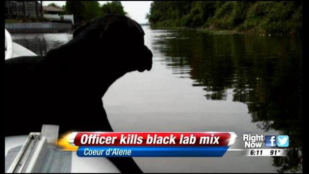 A Coeur d'Alene Police Officer shot and killed a black lab mix on Wednesday. A press release originally identified the dog as a pit bull