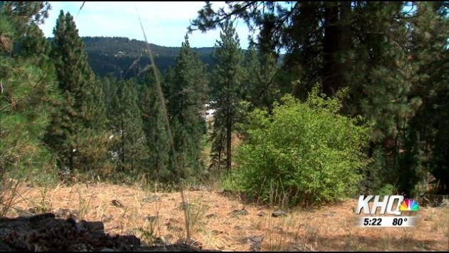 Clearing out brush and gaining defensible space is key to protecting your home against wildfires