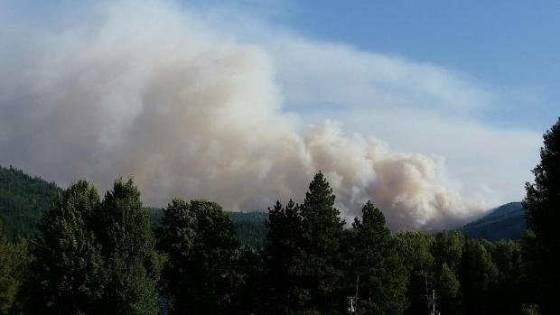 Smoke from the Mills Canyon Complex rises over the trees near Entiat