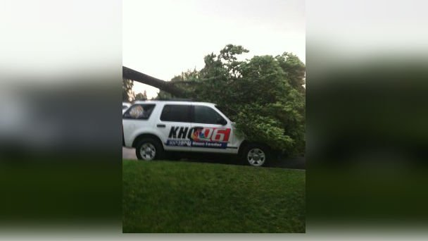 A tree fell on a KHQ car in Coeur d'Alene on Tuesday. No one was hurt.