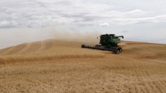 Despite some recent thunderstorms, Harvest 2014 rolls on