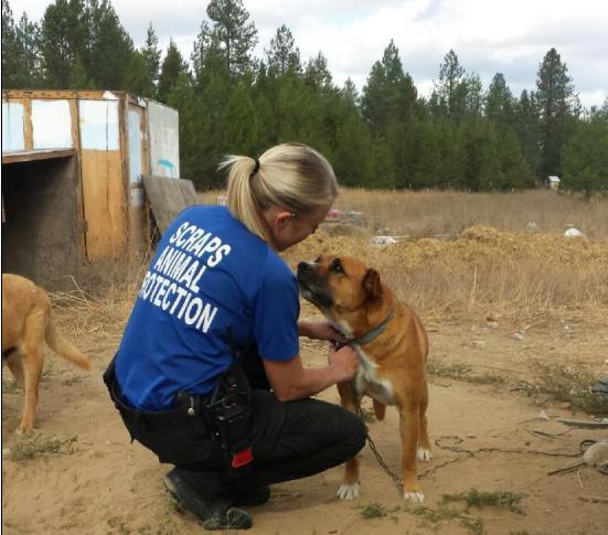 SCRAPS seizes 148 animals