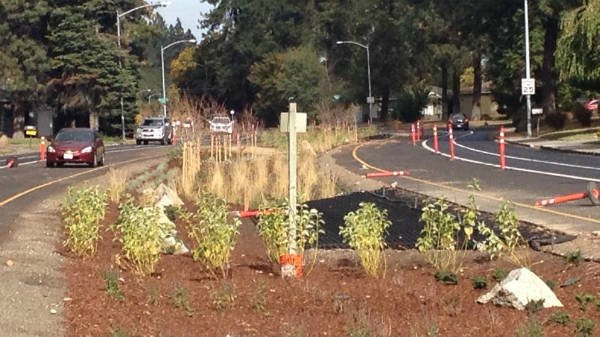 During a recent restoration project on Country Homes Boulevard in North Spokane more than $155,000 dollars was spent on a landscape project that was part of major construction on that road.