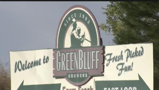 Two suspected burglars targeted homes in the Green Bluff neighborhood
