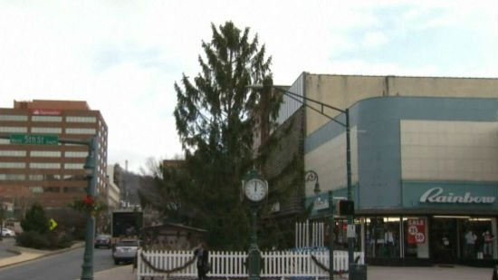 Residents of Reading, Pa. are now embracing their scrawny Christmas tree. Photo: NBC